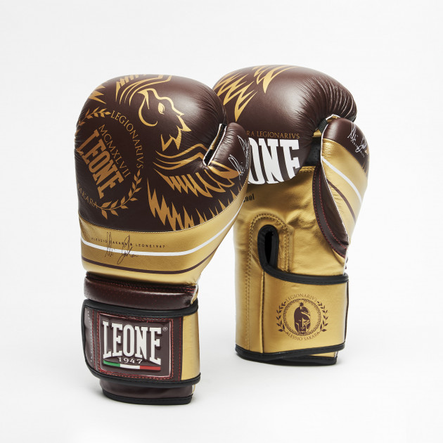 LEGIONARIVS BOXING GLOVES